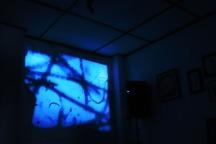 Senja Opening - visual