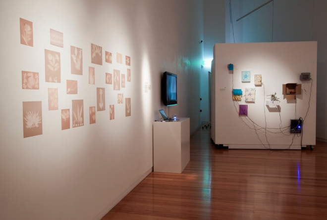 dLab Retrospective - Wagga Wagga City Gallery 4
